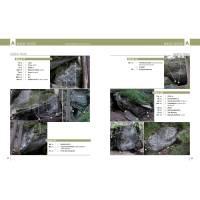 Vorschau: Panico Verlag Alpen en bloc - Band 1 - Boulderführer - Bild 6
